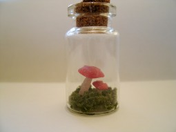 Mushroom in a bottle