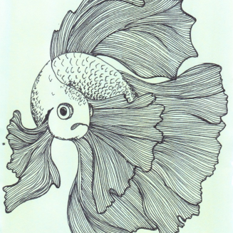 fish line drawing