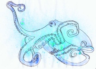 Octopus ink splash